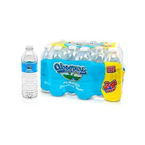 ABSOPURE WATER 16.9OZ / 24CT