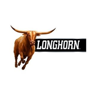 !LONGHORN POUCH WINTERGREEN $1.59 10CT